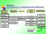esquema el proceso de la investigaci n cient fica