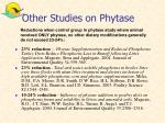 other studies on phytase