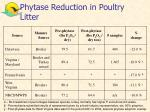 phytase reduction in poultry litter
