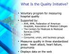 what is the quality initiative