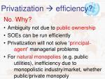 privatization efficiency