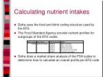 calculating nutrient intakes