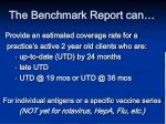 the benchmark report can
