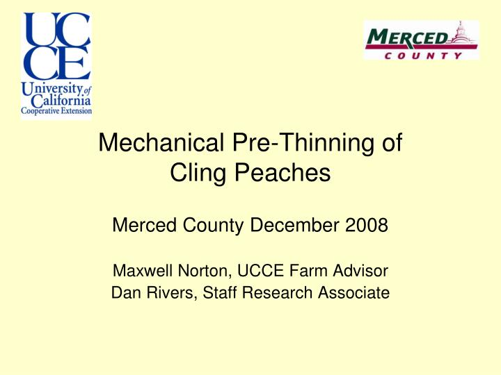 mechanical pre thinning of cling peaches n.