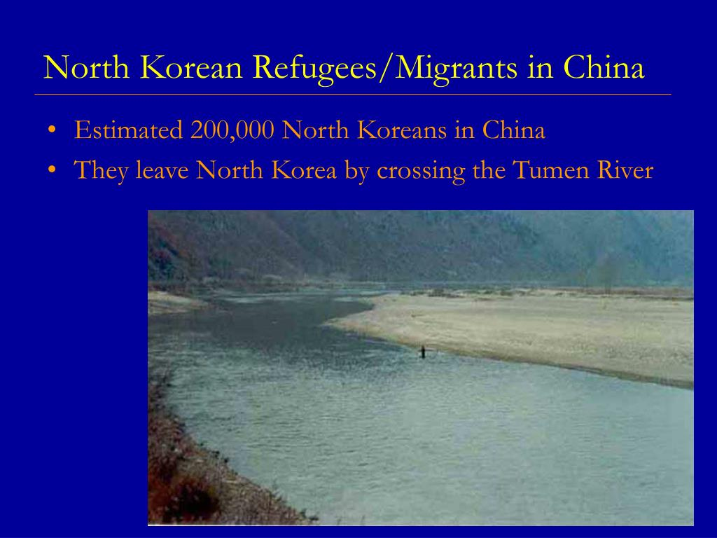 North Korean Refugees/Migrants in China