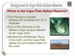 where is the cape flats nature reserve