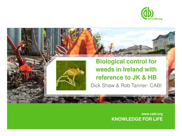 biological control for weeds in ireland with reference to jk hb n.