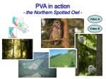 pva in action the northern spotted owl