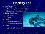 healthy ted23