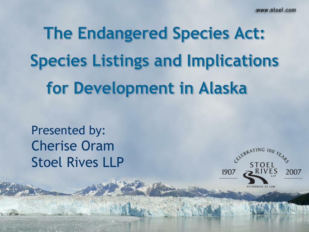 the endangered species act species listings and implications for development in alaska l.