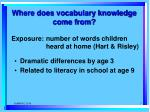where does vocabulary knowledge come from