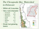 the chesapeake bay watershed in delaware