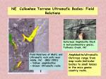 ne cullowhee terrane ultramafic bodies field relations