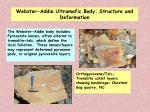 webster addie ultramafic body structure and deformation