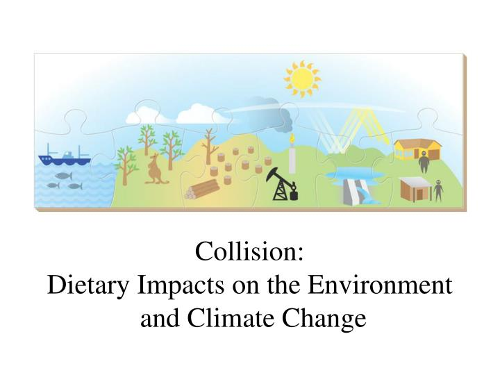 collision dietary impacts on the environment and climate change n.