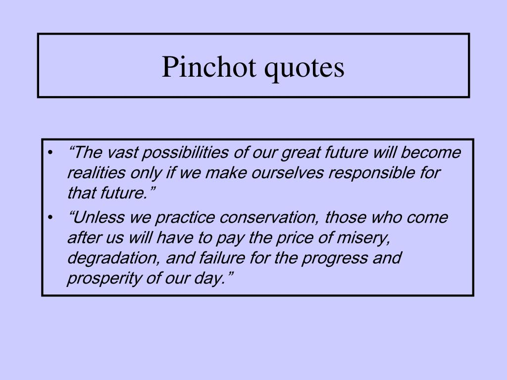 Pinchot quotes