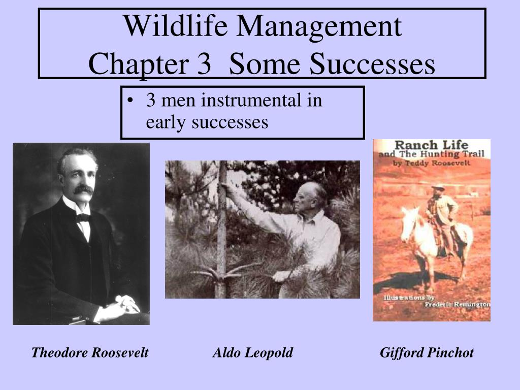 wildlife management chapter 3 some successes l.