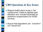 cbo questions key issues3