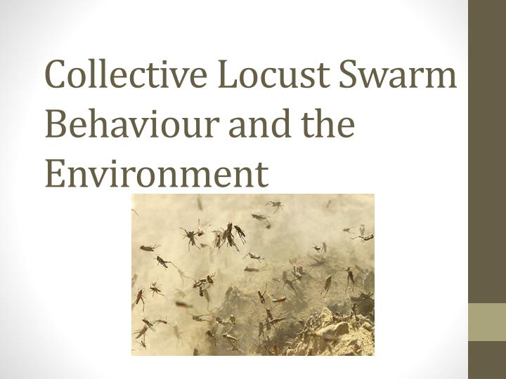 collective locust swarm behaviour and the environment n.
