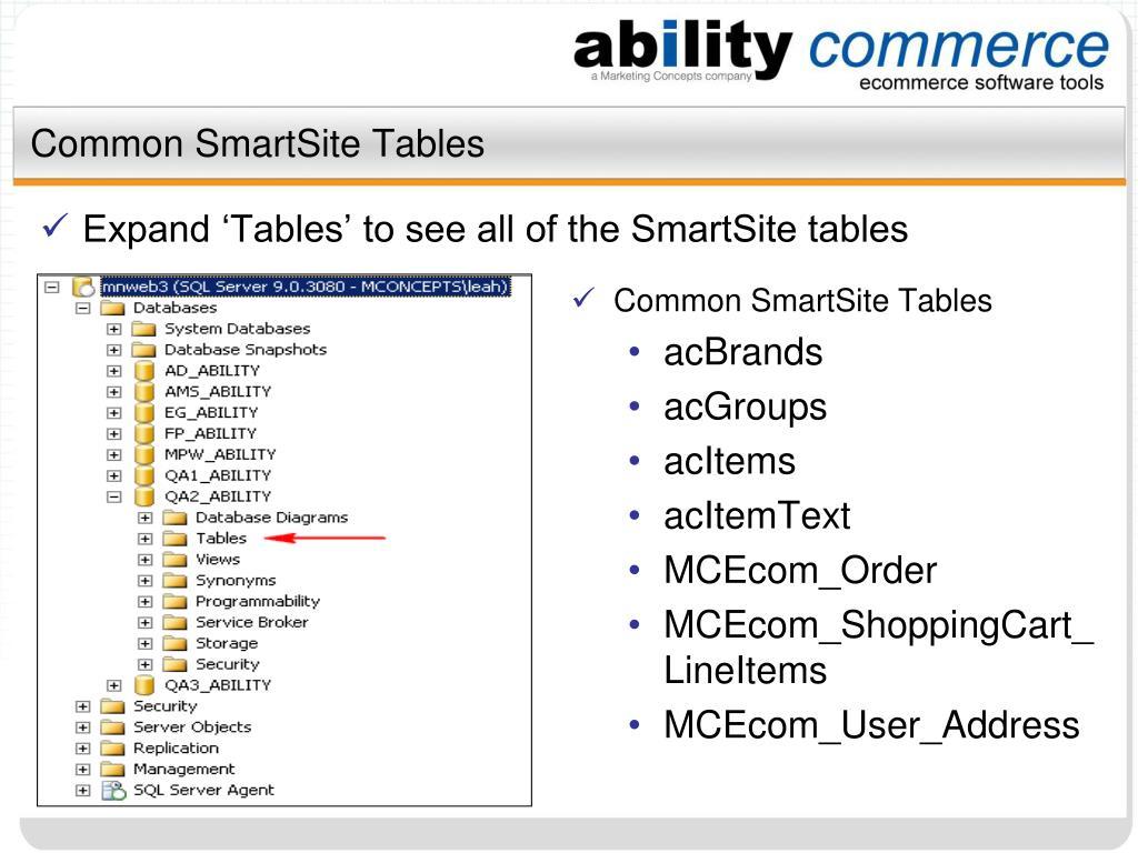 Common SmartSite Tables