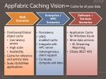 appfabric caching vision cache for all your data