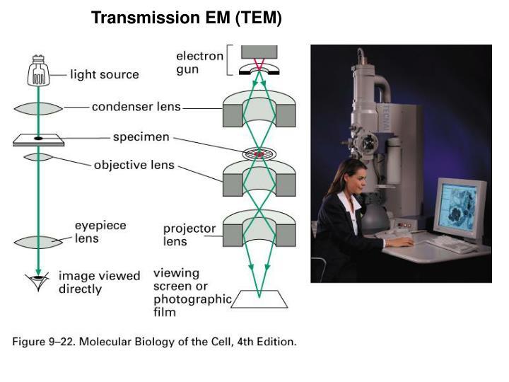 Transmission EM (TEM)