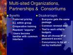 multi sited organizations partnerships consortiums