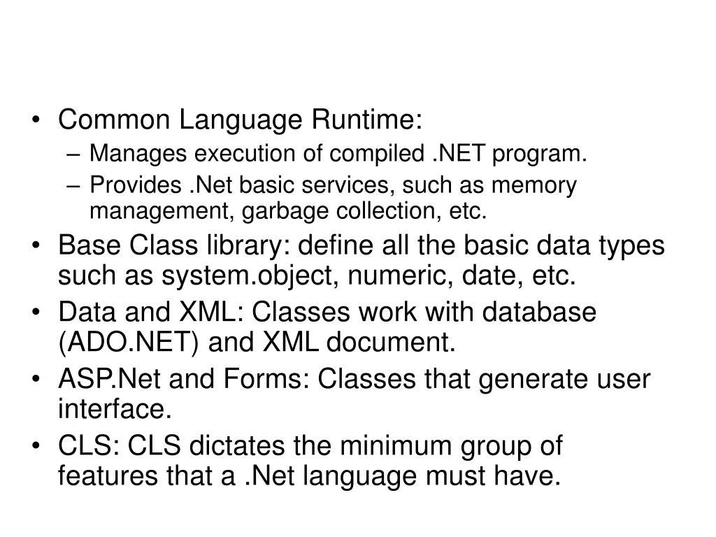 Common Language Runtime: