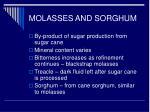 molasses and sorghum