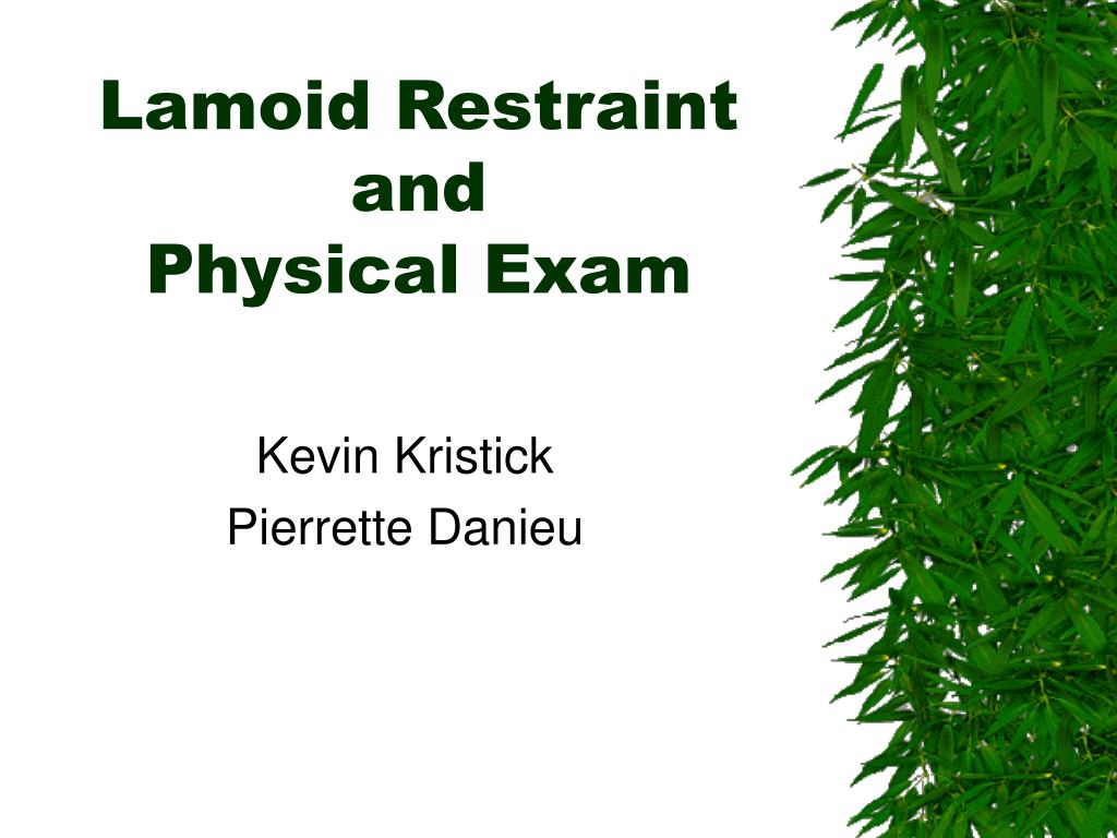 lamoid restraint and physical exam l.