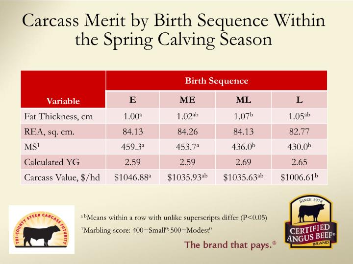 Carcass Merit by Birth Sequence Within the Spring Calving Season