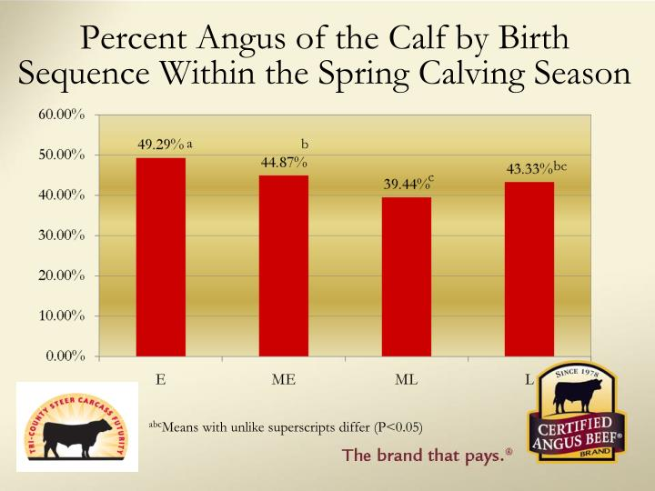 Percent Angus of the Calf by Birth Sequence Within the Spring Calving Season