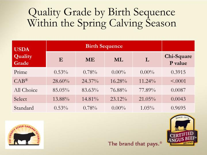 Quality Grade by Birth Sequence Within the Spring Calving Season