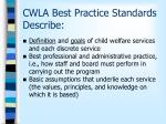 cwla best practice standards describe