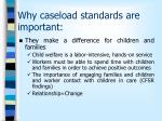 why caseload standards are important