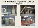 soft wood pellets capacity 6 0 7 0 ton h belgium