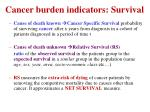 c ancer burden indicators survival