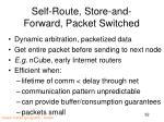 self route store and forward packet switched