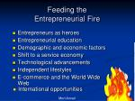 feeding the entrepreneurial fire1