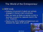 the world of the entrepreneur1