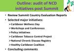 outline audit of ncd initiatives post summit