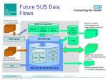 future sus data flows