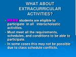 what about extracurricular activities