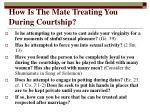 how is the mate treating you during courtship