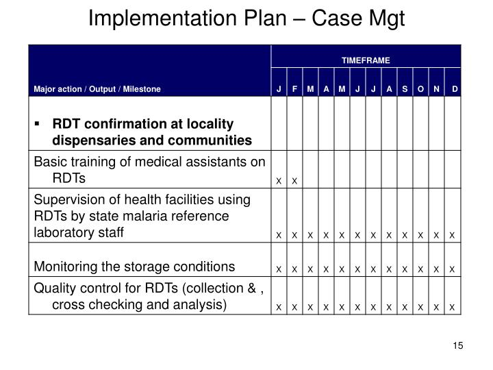 Implementation Plan – Case Mgt