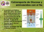 cotransporte de glucosa y amino cidos con el na