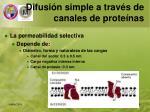 difusi n simple a trav s de canales de prote nas1