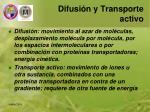 difusi n y transporte activo