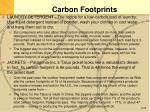 carbon footprints1