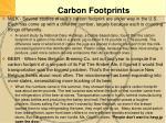 carbon footprints2